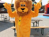De Vlaamse leeuw op onze 11-juli viering